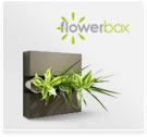 Blumen präsente blumensträuße mit origineller geschenkidee