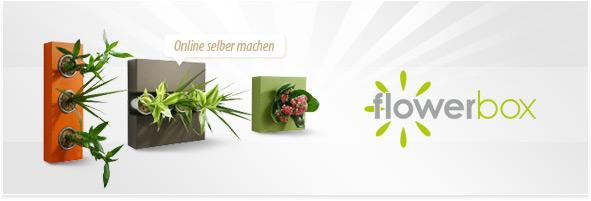 Eigene Flowerbox selber machen – Your Presents