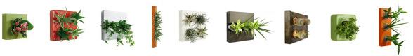 Eigene Flowerbox online erstellen
